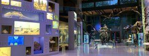 The Witte Museum – San Antonio