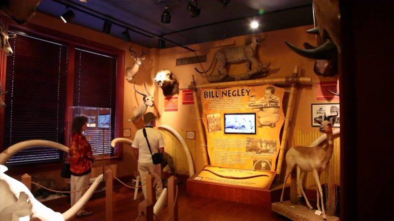 Buckhorn Saloon Museum