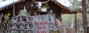 Best Places to Visit This Christmas in Texas